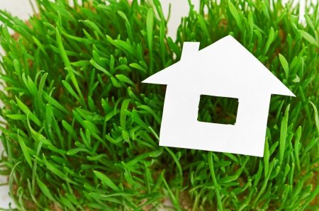 Green house concept  paper house on fresh grass land  photo