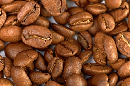 fress coffee beans Stock Photo - 15789541