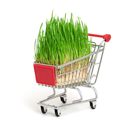 green grass in shopping cart  isolated on white background Stock Photo - 17158225