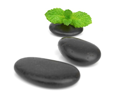 minty: Fresh mint on the black stones with drops
