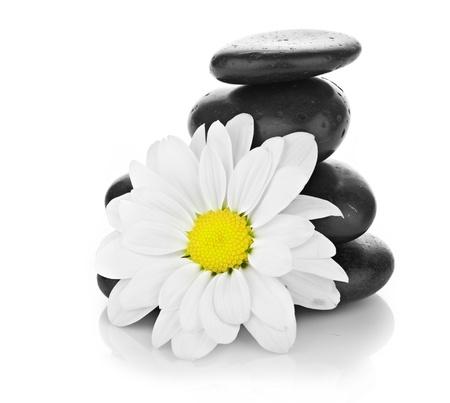 piedras zen: zen piedras de basalto y la margarita aislado en blanco Foto de archivo