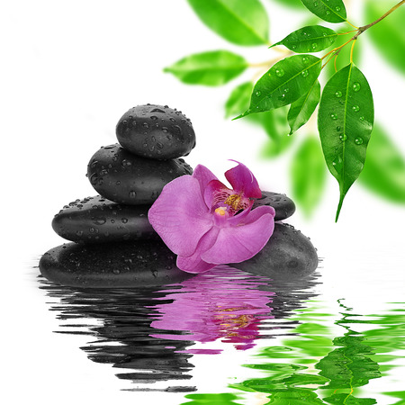 spa Background - purple orchids black stones and bamboo on water photo