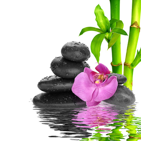 spa Background - purple orchids black stones and bamboo on water Imagens