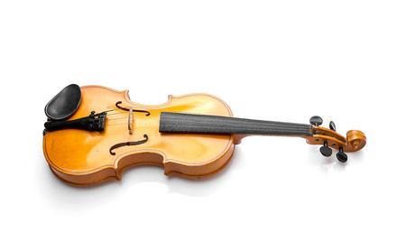violin background: violin on white background