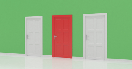 3d door render vote concept