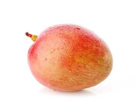 mango: owoców mango