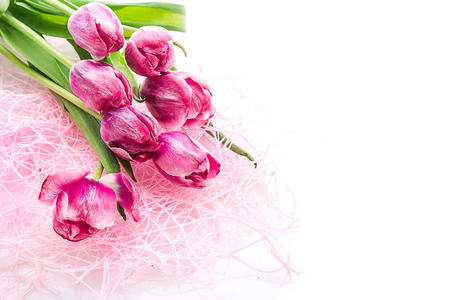 bunch of flowers: pink tulips on white background Stock Photo