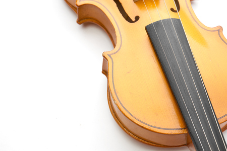 fiddles: violin on white background