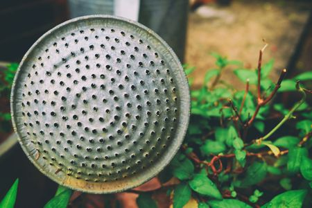 Closed-up Old Aluminum Watering Can in The Garden.