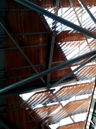 roof beam: wood shades roof