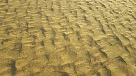 sandy brown: sand waves