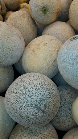 melons: fresh melons