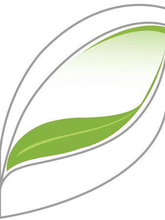 label leaf in white background Stockfoto