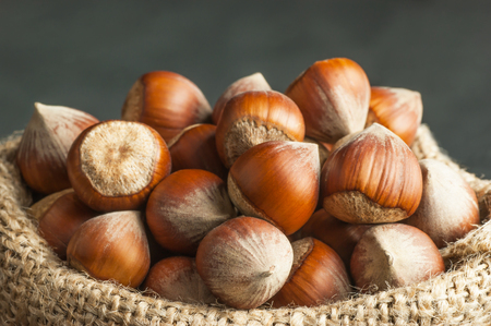 Hazelnuts, filbert in burlap sack. heap or stack of hazelnuts. Hazelnut background, healty food