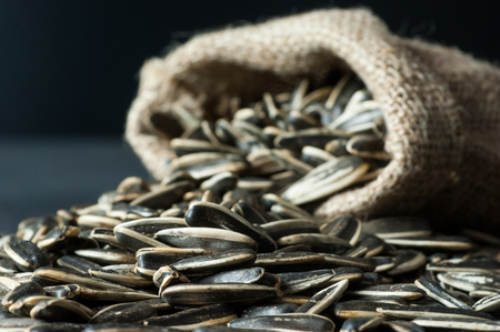 Sunflower seeds in burlap sack