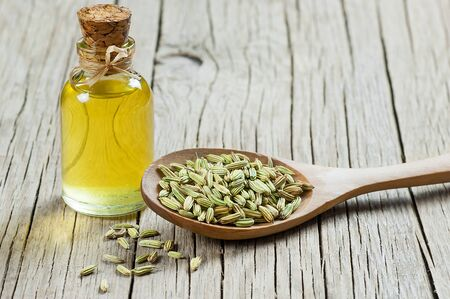 Glass bottle of fennel essential oil with fennel seeds. Herbs alternative medicine background concept