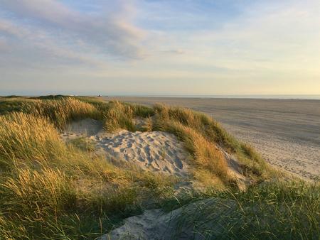 ちょうど日没前に北海岸でザンクト ピーター オルディングで砂丘 写真素材