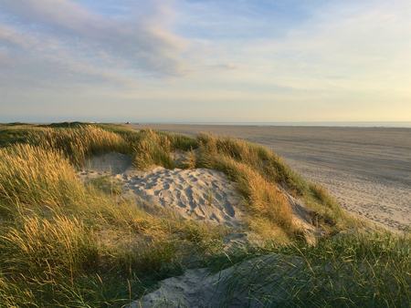 Dunes at north sea shore in St. Peter-Ording just before sunset
