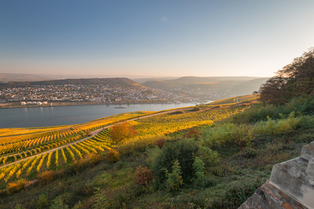 Panoramic view from Niederwalddenkmal to the German city of Bingen and to the region of Rheinhessen