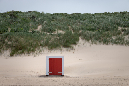 Colorful single beach cabin at North Sea beach of Domburg, Zeeland, the Netherlands in front of overgrown sand dunes