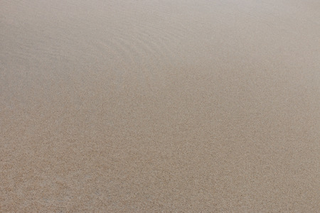 Natural wet and plain sand texture background