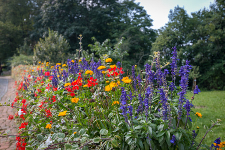 Colorful summer flowers along a cobble stone street in Marburg, Germany