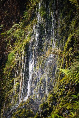 Water running down a tropical rock creating a small waterfall on the Hawaiian island of Maui Imagens