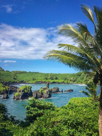 Waianapanapa State Park with Black Sand Beach in the background on the Hawaiian island of Maui along Road to Hana, USA Imagens
