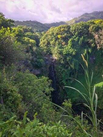 Waimoku Falls along Pipiwai Trail at Haleakala National Park on the Hawaiian island of Maui, USA Imagens - 125515907