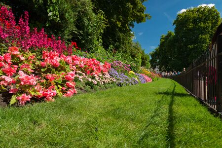 Flower bed behind a fence at St. James Park, London, United Kingdom on a sunny day in summer