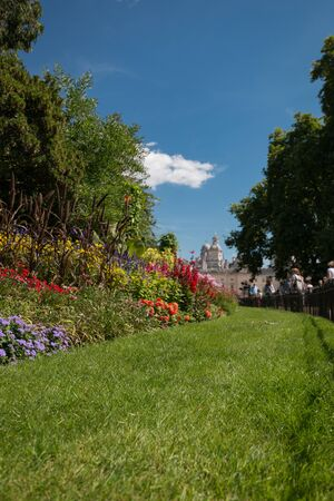 Flower bed behind a fence at St. James Park, London, United Kingdom on a sunny day in summer Imagens - 131942319