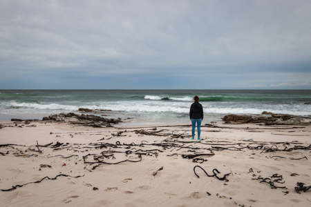 Woman standing at Platboom beach, Cape of Good Hope nature reserve, Cape Town, South Africa against cloudy sky
