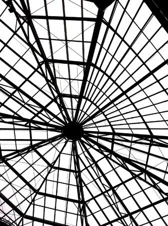 Spider roof