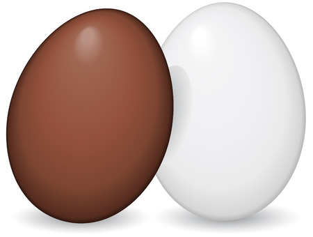 small group of objects: Brown and White Egg - vector illustration
