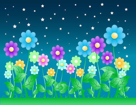 Night time Flowers Background
