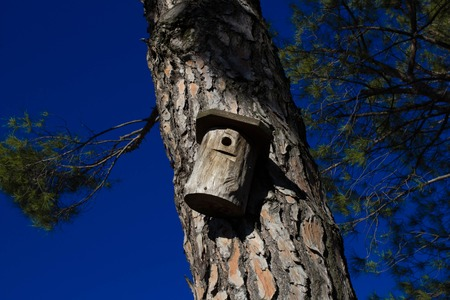 Wooden birdhouse with the blue sky background photo