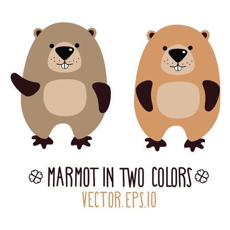Cute marmot. Vector illustration.