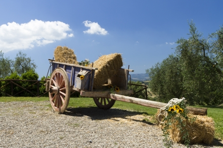 orvieto: antique wagon on a farm in the Tuscan countryside  Stock Photo