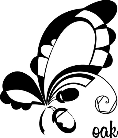 vector elements of design.stylizd oak leaves and acorns in black and white colors. Illustration