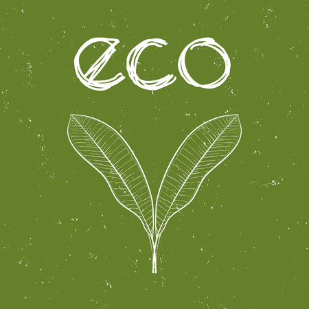 craft product: Eco icon with leaves for organic, natural, bio and eco friendly products on green shabby background.