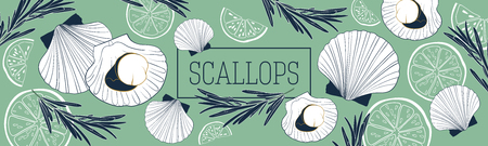 Shellfish and seafood restaurant or fishery product market banners template. Scallops banner vector template. Hand drawn illustration on green background. Illustration