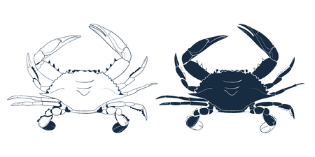 Blue Swimmer Crab Silhouette isolated on white background. Vector hand drawn outline seafood illustration. Sign, Emblem, Icon or Logo Template.