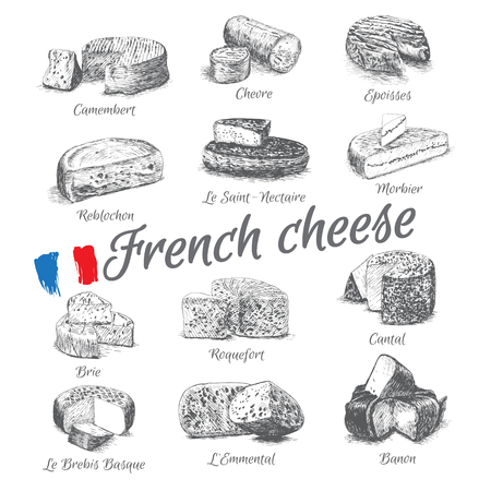 illustrated Set # 4 of French Cheese Menu. Illustrative sorts of cheese from France. Иллюстрация