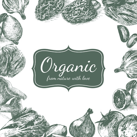 limon: Hand drawn monochrome illustration vegetables on white background