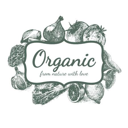 cos: Hand drawn monochrome illustration vegetables on white background