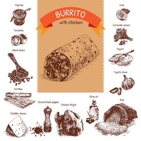 illustration of burrito ingredients. Hand drawn colorful illustration on white background