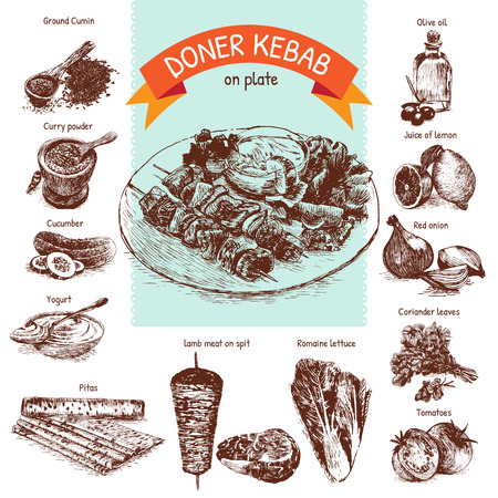 romaine lettuce: illustration of doner kebab ingredients. Hand drawn colorful illustration on white background