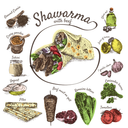 pita bread: illustration of shawarma ingredients with beef. Hand drawn colorful illustration on white background