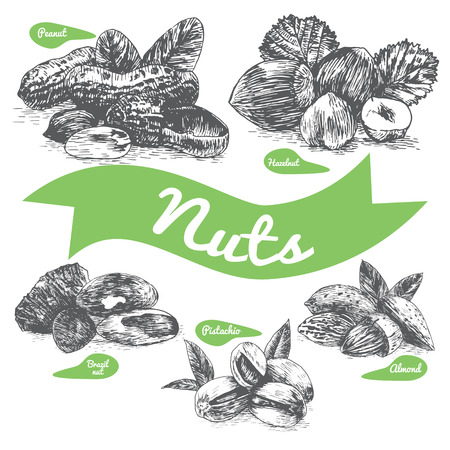 Vector illustration black and white set with nuts. Different sort of nuts on white background