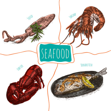 dorado: Vector illustration colorful set with seafood. Different kinds of seafood on white background Illustration